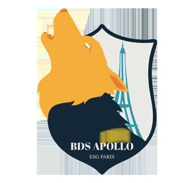 logo bds